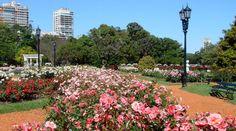 Buenos Aires-El Rosedal (El Jardín de las Rosas)