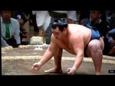May 2016 - Day 1 - Kakuryu v Kaisei - YouTube