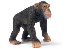 Chimpanzee Male (TRU 2012)