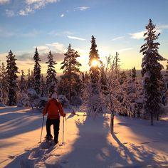 snowshoeing in Finland [by Anna Leikkari]