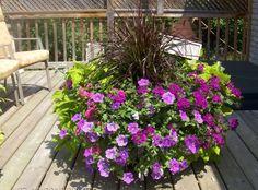 Winner: Deb from Lisle Outdoor Flowers, Outdoor Planters, Outdoor Landscaping, Outdoor Fun, Outdoor Stuff, Outdoor Ideas, Backyard Ideas, Outdoor Spaces, Outdoor Living