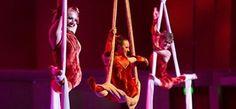 "Milwaukee Symphony Orchestra: ""Cirque Musica Holiday"" Milwaukee, Wisconsin  #Kids #Events"