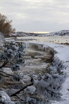 Take a snowy walk in Giant Springs Great Falls, MT.