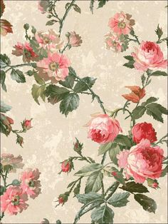 wallpaperstogo.com WTG-134233 Seabrook Designs Traditional Wallpaper
