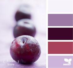 light purple, dark purple