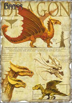 Brass Dragon by Richard Sardinha