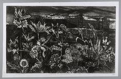 Onkruid en nieuwbouw - T.A. Ros - 1968  Maat: 33,5cm x 51cm  Materiaal: inkt op papier  Inventarisnummer: SZ37718