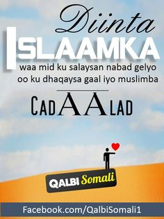 Islaamka# nabadgelyo# nabad# qalbi somali