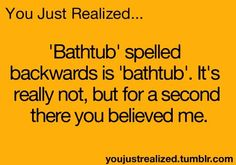 """You just realized... 'Bathtub"""" spelled backwards is """"bathtub"""". It's really not, but for a second there you believed me."""