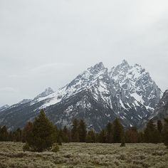 cold mountains...grand tetons not far from home.
