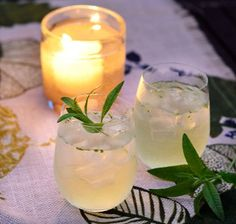 Fresh Classic: Lemon Verbena Gin & Tonic