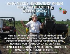 "Foto: WHO NEEDS TOXIC HERBICIDES? New experimental technology uses an air compressor and blasts weeds to smithereens with tiny particles of corn cobs without harming the crop. High-speed particles of grit shred the weeds at 100 pounds per square inch of compressed air. ""We've been getting season-long weed control of about 80 to 90 percent, which isn't perfect, but most organic farmers would be happy with that amount of weed control,"" says Forcella, a USDA Dept. of Agriculture agronomist. The…"