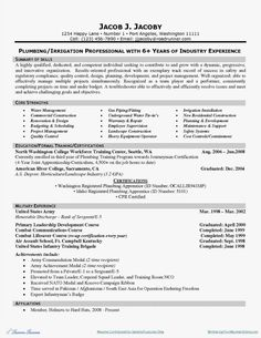 Project Manager Resume Example Resume Examples