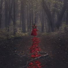 The Trail of Red by parvana_photography on Flickr