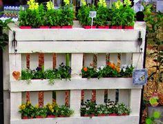 Pátio das Flores: Março 2015