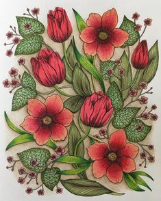 """84 Likes, 11 Comments - @tan9erine_j25 on Instagram: """"#mariatrolle #maria_trolle #blomstermandala #blomstermandalamålarbok #adultcoloring…"""""""