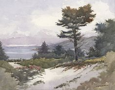 """Morning Cypress Carmel by Larry Cannon Watercolor ~ 11"""" x 14"""""""