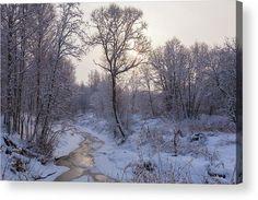 Anna Matveeva Acrylic Print featuring the photograph Fabulous Winter Landscape by Anna Matveeva