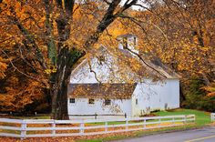 Aspetuck Barn - Autumn in Connecticut
