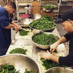 Mikey & Gabe chopping tons of fresh kale & chard for our Leafy Sauce 'tomato sauce w benefits'! Fresh new batches avail in stores next week! Get some! #handcrafted #citysaucery #kale #swisschard #organic #farmfresh #nongmo #tomatosauce #nonnasleafysauce #madeinnyc #growth #vitamink #healthy #vegan