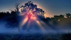 Mystical Quotes About Nature. QuotesGram