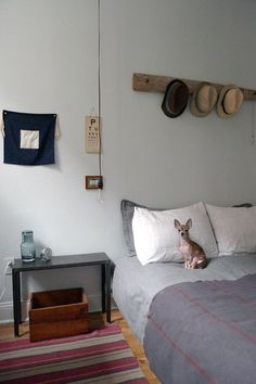 This Chihuahua's size matches the accessory scale of the room. apartment therapy - plank with hooks to hang scarves or whatever at the front door House Styles, Decor, Bedroom Decor, Home, Interior, Bedroom Inspirations, Simple Bedroom, Home Bedroom, Home Decor