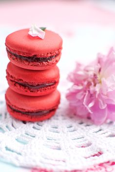 raspberry macarons french sweets