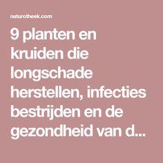 9 planten en kruiden die longschade herstellen, infecties bestrijden en de gezondheid van de longen bevorderen - Naturotheek