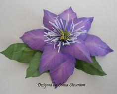 Susan's Garden Clematis
