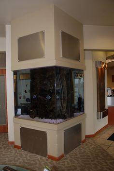 650 Gallon home plate shaped custom aquarium. Inhabitants are aggressive saltwater fish and live rock