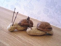 snail craft-careful of peanut allergies Nature Crafts, Fall Crafts, Arts And Crafts, Acorn Crafts, Pine Cone Crafts, Animal Crafts For Kids, Diy For Kids, Walnut Shell Crafts, Deco Nature