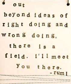 Out Beyond the Ideas of Right Doing and Wrong Doing There is a Field. I'll Meet You There...