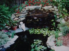 My parents large goldfish pond replete with waterfall