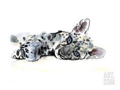 Arabian Leopard Cub, 2008 Giclee Print by Mark Adlington at Art.com