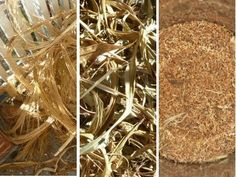 5 Acres & A Dream: More Thoughts on Growing Animal Feeds