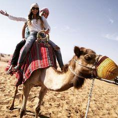 Camel #safari #desert #dubai #love #fun #PlatinumHeritage