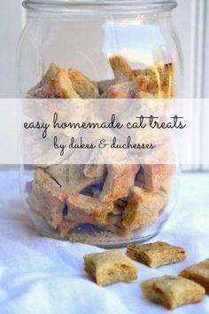 DIY Pet Recipes For Treats and Food - Easy Homemade Cat Treats - Dogs, Cats and Puppies Will Love These Homemade Products and Healthy Recipe Ideas - Peanut Butter, Gluten Free, Grain Free - How To Make Home made Dog and Cat Food - http://diyjoy.com/diy-pet-recipes-food