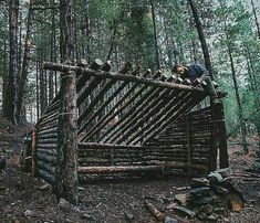 Bushcraft shelter in the making 😍only dead trees used, do U like these kind of shelters? 📸: shelter in the making 😍only dead trees used, do U like these kind of shelters? Bushcraft Camping, Camping Survival, Outdoor Survival Gear, Survival Shelter, Survival Tools, Wilderness Survival, Camping And Hiking, Survival Prepping, Outdoor Camping