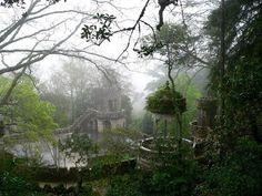 The Enchanted Storybook: Photo