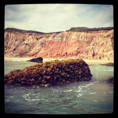 Gay Head Cliffs. Martha's VIneyard.  Photo by terrellsandefur • Instagram