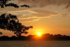 Pantanal Sunrise by h_haenen, via Flickr