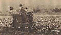 Le travail des femmes pendant la Grande Guerre. Courageuses femmes sans elles que serions nous ???