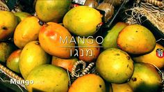 Shalom! I'm Jonathan, and I'm glad to have you with me on this adventure learning the Hebrew words for things from the world around us!  This episode is on lots of yummy #fruit - like #mango!  Watch the video here: http://youtu.be/iUFlC_aCG2k  I hope to see you around www.holylanguage.com as we follow #Yeshua in a #Hebrew way, TOGETHER! Much LOVE