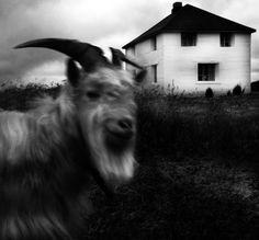 Kjetil Karlsen Foto