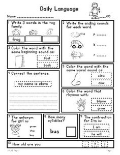 Penguin Fact Packet {Graphic Organizer, Venn Diagram, KWL