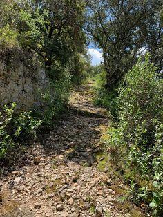 Le Chemin de la Traverse - a footpath connecting our hamlet, Gimios, to our town, Saint-Jean-de-Minervois