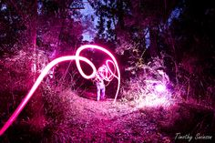 Light Trails Forest 1 | Flickr - Photo Sharing!