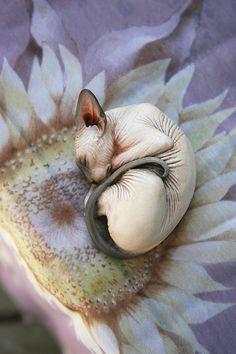 Sphynx Cat Figurine painted by Deborah by DeborahMcDermott on Etsy