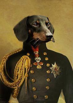 Portrait Renaissance, Renaissance Art, Reptile Cage, Dachshund Drawing, Royal Animals, Labrador, Paint Your Pet, Boston Terrier Dog, Pet Memorials