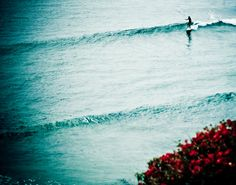 Perfect wave.